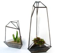 Items similar to Glass Terrarium - Succulent Terrarium - Geometric Terrarium on Etsy