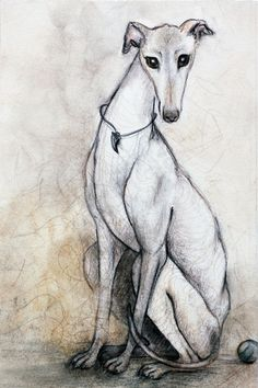 The Greyhound Wearing His Thorn Art Print I always wanted a greyhound... ~V