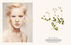 Scandinavia SSAW Magazine - Scandinavia SSAW Magazine S/S 14 Covers: WILD FLOWERS (7 Covers)