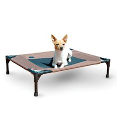 dog bed trampoline - K&H Pet Products Original Pet Cot Elevated Pet Bed Medium Chocolate/Mesh x x Dog Beds Raised Dog Beds, Elevated Dog Bed, Dog Cots, Pet Beds, Pet Accessories, Dog Supplies, Large Dogs, Small Dogs, Doge