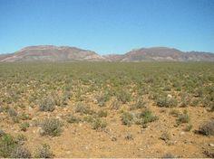 Archived: 2010 Little Karoo Biodiversity Assessment - Biodiversity BGIS Biomes, Biology, Grand Canyon, Maps, Nature, Travel, Outdoor, Outdoors, Naturaleza