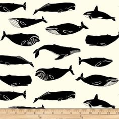 Jay-Cyn Designs for Birch Organic Fabrics, Inkwell, Whale Pod Cream Cotton Quilting Fabric, Silk Fabric, Vinyl Fabric, Weighted Blanket, Discount Designer, Birch, Fabric Design, Printing On Fabric
