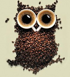 Ha ha - love owls, LOVE coffee - this is brilliant.