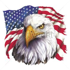 (14311) 13x12 - EAGLE WITH FLAG - america, patriotic, Plastisol Transfer, USA eagle flag stars stripes red white blue, Patriotism