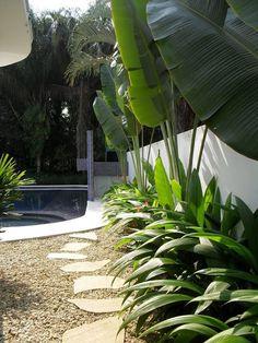 Backyard landscaping design.