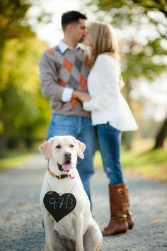 engagement session with dog                                                                                                                                                      More