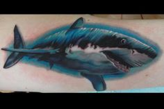 Shark! im in love with the color