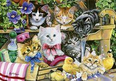 Bathtime+Kittens
