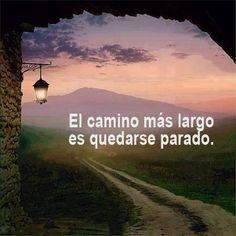 el camino más largo...