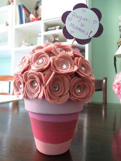 Pianta di rose per festa della mamma
