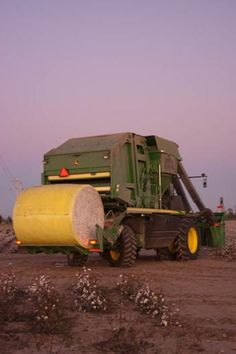 Cotton used to be dumped into a cotton trailer  be 'stomped' down.  Now cotton is picked  rolled into a round module just like hay!  Pretty clever!!
