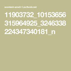 11903732_10153656315964925_3246338224347340181_n
