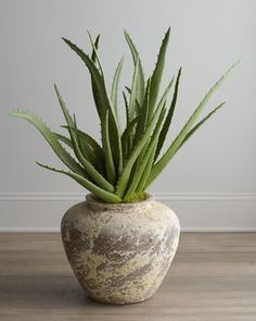 It's Houseplant Appreciation Day so we're highlighting a true household staple for skin care: aloe vera.     The benefits of aloe vera include treating sunburn, being a moisturizer, treating acne, fighting aging, decreasing the visibility of stretch marks, and being nutrient rich for good health overall.