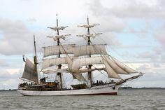 Tall Ships' Race 2008 : Parade of Sail in Den Helder - Holland