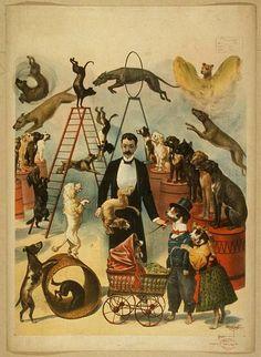 PIC OLD CIRCUS | Vintage Circus Poster - Paperblog