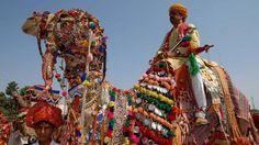 A guide on #Pushkar Camel Fair. #India | #Rajasthan