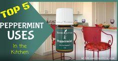 Essential Oils Australia, Buy Essential Oils, Young Living Oils, Young Living Essential Oils, Peppermint Essential Oil Uses, Young Living Peppermint, 5 Ways, Essentials, Explore