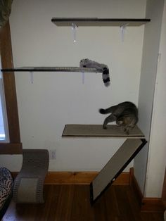 Diy cat shelves  cat trees Cat toy ideas