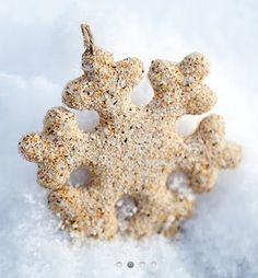 beach sand snowflakes, and other nautical Christmas ornament ideas.. I'll add glitter!!!!