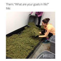 Goals af.🌱💵