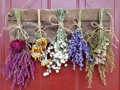 Dried Flower WreathWreathDrying RackMother's Day
