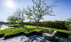 // Sari by Sansiri, Landscape design by Shma Company Limited. Photos courtesy of Shma Roof Terrace Design, Green Roof System, Japan Garden, Garden Floor, Contemporary Landscape, Landscape Designs, Rooftop Garden, Landscape Pictures, Outdoor Landscaping