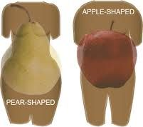 Dr Oz, Apple Body Type and Shape Metabolism Boosting Tips, Cortisol.  Find out why women with an apple shaped body often suffer from a hormonal imbalance.