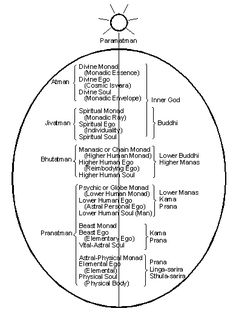 Diagram: septenary auric egg