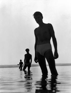 Image result for herbert list