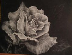White charcoal on smooth black paper. The center petals seem somewhat choppy compared to the outer ones. Roses are one of my favorite subjects Charcoal Sketch, Charcoal Art, White Charcoal, Charcoal Drawings, Pencil Drawings Of Flowers, Pencil Drawing Tutorials, Cool Drawings, Drawing Ideas, Drawing Designs