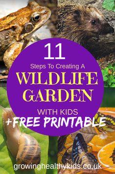 12 Creative Gardening Ideas You're Going To Love Nature Activities, Craft Activities For Kids, Outdoor Activities, Diy Garden Projects, Outdoor Projects, Garden Ideas, Concrete Jungle, Wild Life, Gardening For Beginners