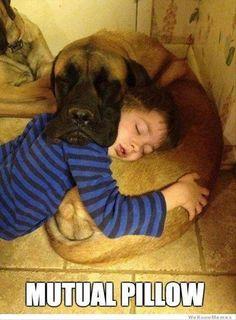 mutual pillow
