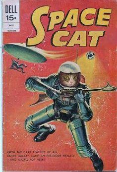 space cat