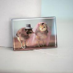 Chicken Wedding Chicks in Veil And Hat Rigid by chicksinhats