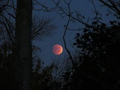 Eighth Lunar Eclipse Night Aesthetic, Aesthetic Photo, Aesthetic Pictures, Olgierd Von Everec, Dark Black, Lunar Eclipse, Stargazing, Night Skies, Scenery