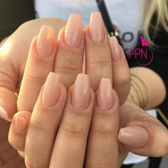 Image result for bio sculpture gel nails extensions