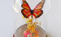 Google Image Result for http://www.nobiggie.net/wp-content/uploads/2012/05/butterfly-5-400x245.jpg