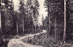 Photo by Leonard Frank, Alberni, B. The Malahat Drive on southern Vancouver Island (near Victoria, BC). Opened in Vancouver Island, Vintage Pictures, Historical Photos, Pacific Northwest, British Columbia, North West, West Coast, Old Photos, Lighthouse