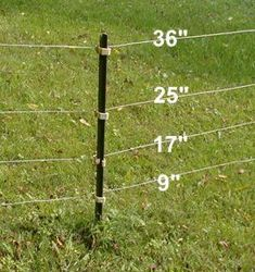 Fias Co Farm/Goats- Fencing - Doe Area: Four strands of electric. The top of the pole has been sawed off with a hack saw to make it more attractive. Goat Fence, Pasture Fencing, Farm Fence, Brick Fence, Sheep Fence, Ranch Fencing, Horse Fence, Rustic Fence, Fence Stain