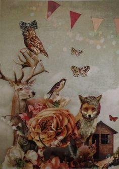 Postkaart Kaartje of Kip | Bosdieren