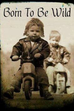 The 50 All Time Funny Biker Quotes and Sayings   Custom Motorcycles & Classic Motorcycles - BikeGlam
