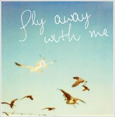 would you please just fly away with me <3