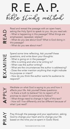 How To Study The Bible: REAP Bible study method. Whether you're a beginner or just looking to dive deeper into scripture, R. is an easy way to study the Bible. Bible Study Notebook, Bible Study Plans, Bible Study Tips, Bible Study Journal, Scripture Study, Bible Lessons, Bible Study Guide, Devotional Journal, Beginner Bible Study