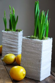 This milk carton planter is a simple and easy Spring centerpiece. Just cut a milk carton down and glue linen strips around. A pretty planter for your home. Tetra Pak, Milk Carton Crafts, Decoration Plante, Creation Deco, Simple Centerpieces, Diy Planters, Planter Ideas, Flower Planters, Flower Pots