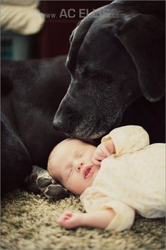 baby with great dane. Oh my gosh