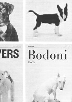 If Fonts Were Dogs