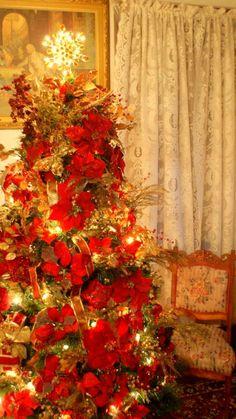 #Poinsettia #Christmas #tree