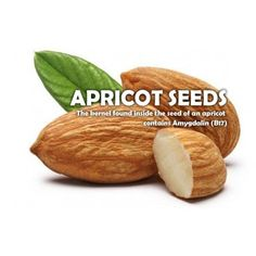 Apricot Seeds has Vitamin Apricot Seeds Benefits, Apricot Kernels, Fruit Seeds, All Fruits, Cancer Fighting Foods, Natural Vitamins, Nutritional Yeast, Health And Nutrition, Vitamin B17