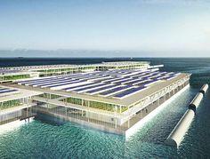 Granja solar flotante que puede producir 20 toneladas de verduras al día.