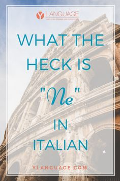 "WHAT THE HECK IS ""NE"" IN ITALIAN?"